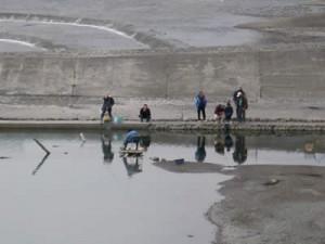 今日の釣り人たち